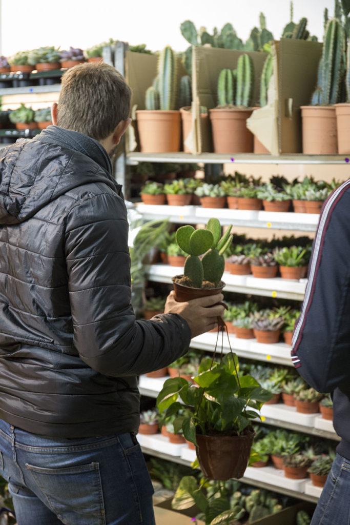 vente plantes pour tous