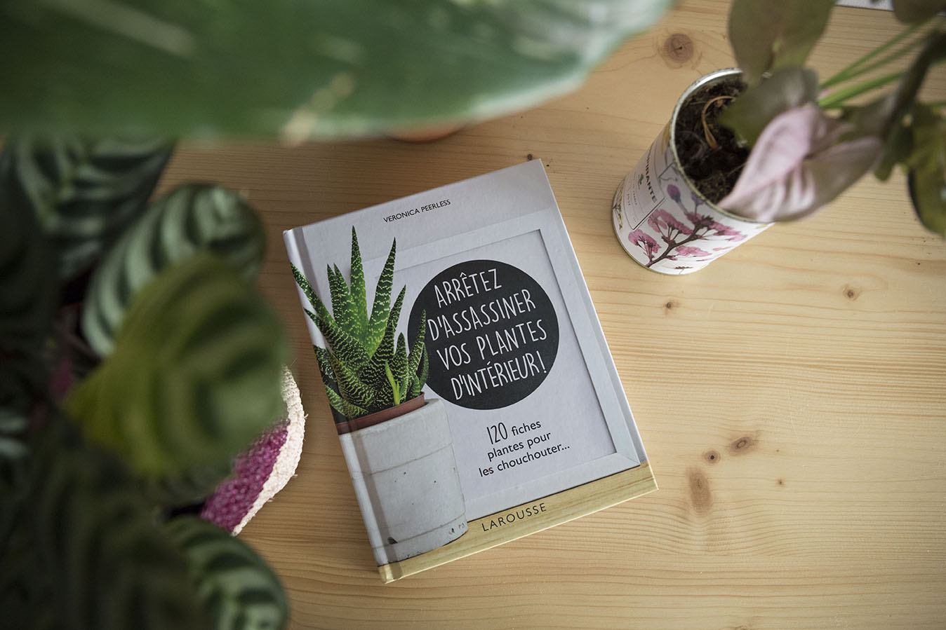 plantes pas assassinees