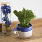 cache ceramics pot