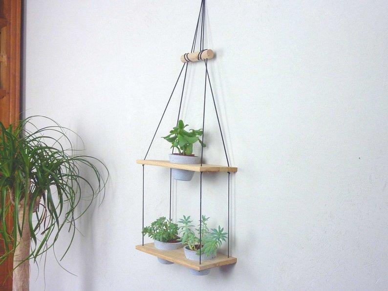plante porte suspension