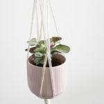 suspension macrame au fil des plantes
